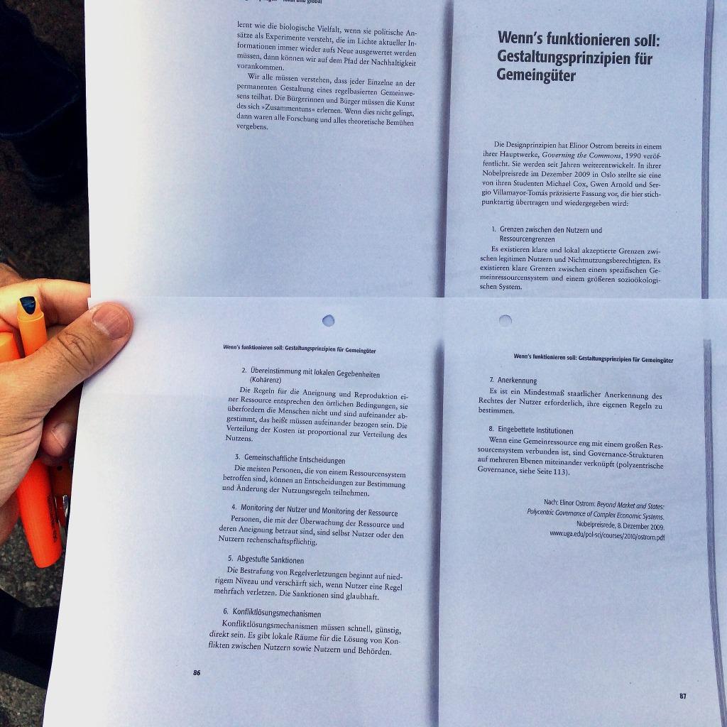 Prinzipien funktionierender Gemeingüter nach Elinor Ostrom